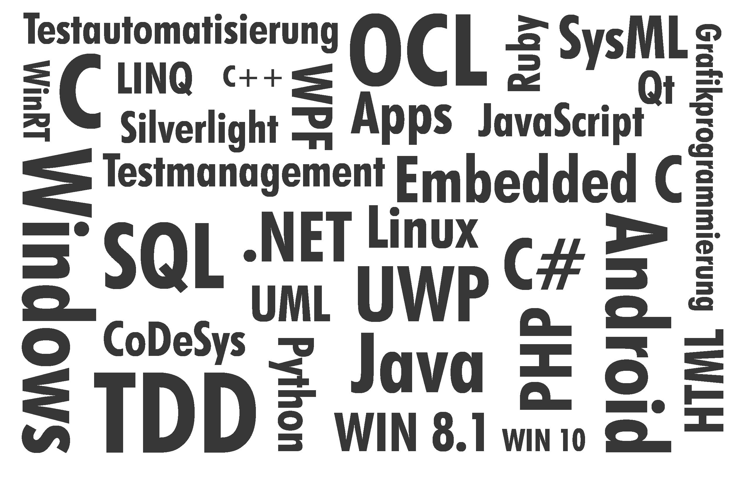 Software-Entwicklulng Wortwolke